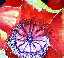 RED POPPY FROM EVAS`  by jyoti kumar