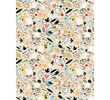 pattern of funny birds Photographic Print
