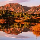 Reflections by Gregory J Summers