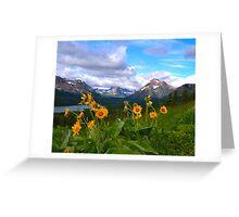 Wildflowers Glacier National Park Greeting Card