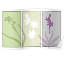 3 orchids Poster