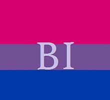 Bi Flag by th3doctor