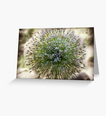 Abstract Flower zoom focus photography Greeting Card