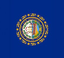 Smartphone Case - State Flag of New Hampshire - Vertical by Mark Podger