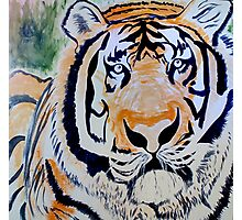 Tiger Quest Photographic Print