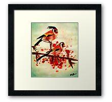 Love Birds Framed Print
