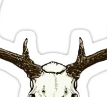 Mule deer skull Sticker