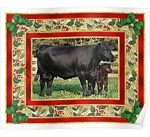 Black Angus Cow And Calf Blank Christmas Greeting Card Poster
