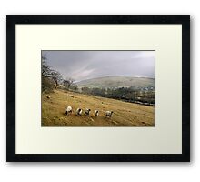 Misty Day in the Yorkshire Dales Framed Print