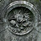 Ever Blooming, Presbyterian Cemetery, Lynchburg, VA by boondocksaint