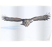 Winged avenger Poster