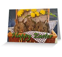 Happy Easter Dandelion Bunnies Greeting Card