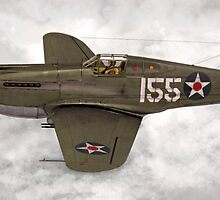 Curtiss P-40 Warhawk  by Walter Colvin