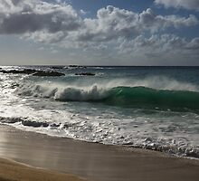 Big Wave at Waimea Bay, North Shore, Oahu, Hawaii by Georgia Mizuleva