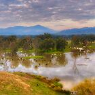 Flood Plains - Upper Murray River - NSW/VIC - The HDR Experience by Philip Johnson
