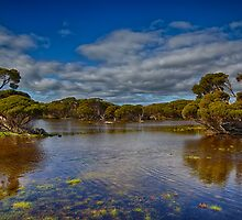 The Coorong Wetlands by renekisselbach