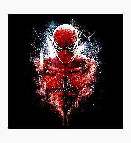 Spiders Are Amazing Photographic Print