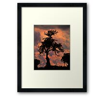 Inhaling the Evening Framed Print