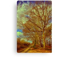Country Walk 2 Canvas Print