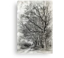 Country Walk BW Canvas Print