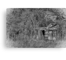 BW Carriage Canvas Print