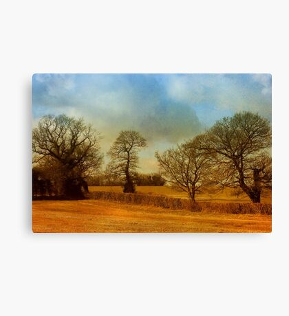 The Country Scene Canvas Print
