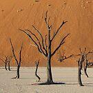 Sossussvlei Trees by IngridSonja