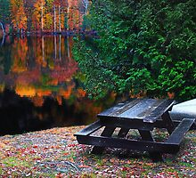 The Canoe and the Picnic Table by Nazareth