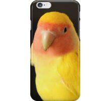 The Lovebird iPhone Case/Skin