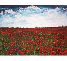 Among the Poppies Photographic Print