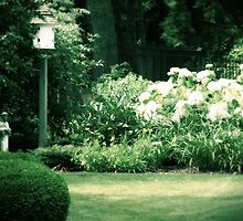 Bird House and Statue garden photography by jemvistaprint