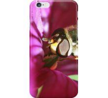 Honest Fly iPhone Case/Skin