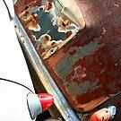 Rusty Rear Ends by Michael  Herrfurth