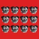 Pugs by Honeyboy Martin