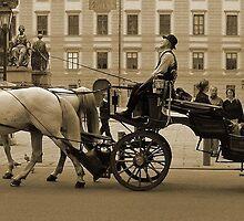 Centro histórico .....Viena-Austria. by cieloverde