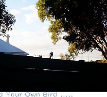 Vaguely Find Your Own Bird - 22 05 13 by Robert Phillips
