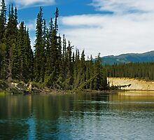 Yukon River Banks by Yukondick