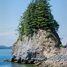 Rocky, Tree Crowned Islet, Ketchikan, Alska by Gerda Grice