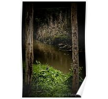 River Between Two Trees Poster