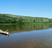 Clearwater River by Kathleen M. Daley