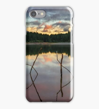 Cryptic Message iPhone Case/Skin