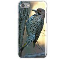 Northern Flicker iPhone Case/Skin