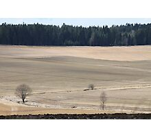 Farm land. Spring time. Norway. Photographic Print