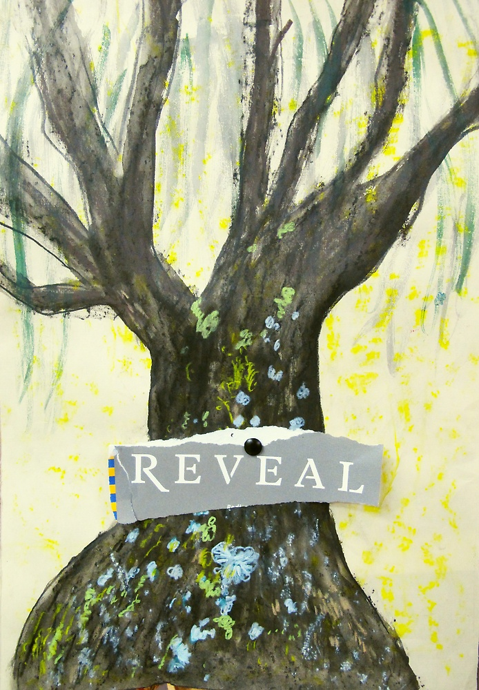 reveal by donnamalone