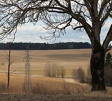 Farm land. Spring time.  by UpNorthPhoto