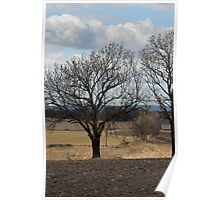 Farm land. Spring time. Poster
