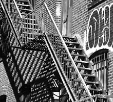 High Line New York by joelmeadows1