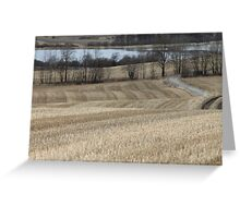 Country road through farm land. Spring time. Greeting Card