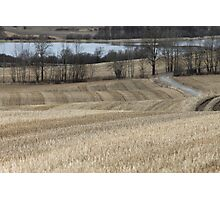 Country road through farm land. Spring time. Photographic Print