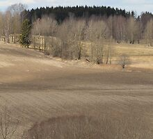 Farm land. Spring time. Stubble. by UpNorthPhoto